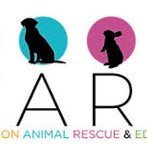 Companion Animal Rescue and Education (CARE) Logo
