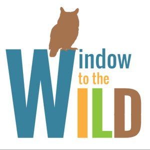 Window to the Wild Logo
