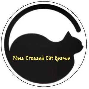 Paws Crossed Cat Rescue Charitable Trust Logo