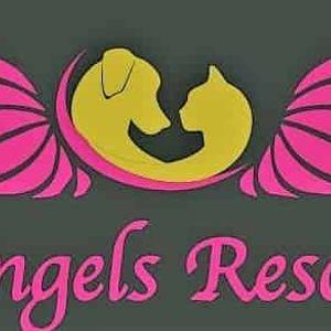 angels rescue Logo