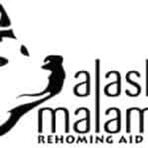 Alaskan Malamute Rehoming Aid Australia Incorporated Logo