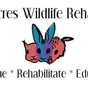 Nutmeg Acres Wildlife Rehabilitation Logo