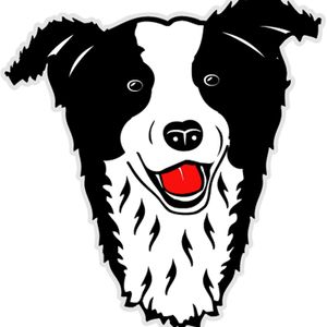 Wiccaweys Rescued Border Collies & Working Sheepdogs Logo