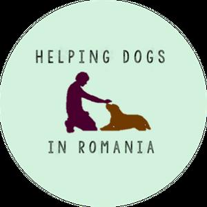 Helping Dogs In Romania Logo