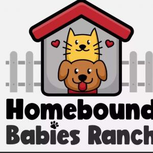 Homebound babies ranch Logo