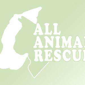 All Animal Rescue U.K Logo