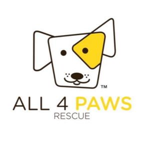 All 4 Paws Rescue Logo