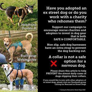 Rushton Dog Rescue Logo