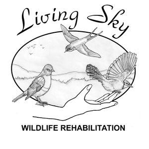 Living Sky Wildlife Rehabilitation Logo