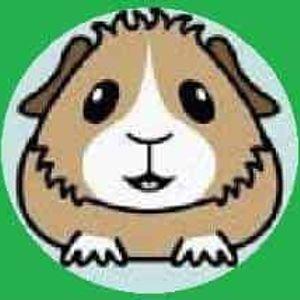 Miss Piggy's Guinea Pig Lair Inc. Logo