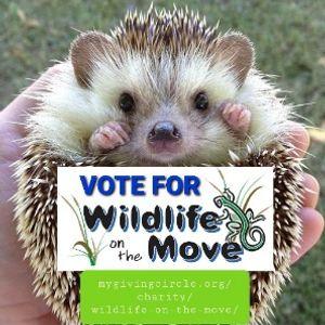 Wildlife On The Move - Animal Care & Educational Programming Logo