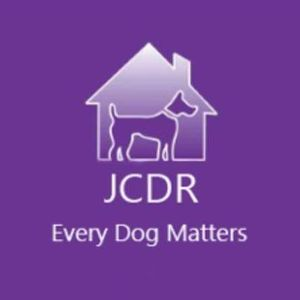 Jodie's Cyprus Dogs Rehoming Logo