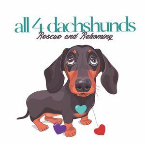 All 4 Dachshunds Inc Logo