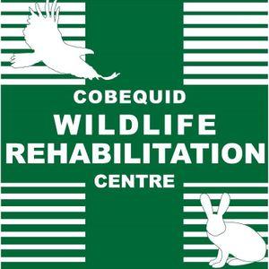 Cobequid Wildlife Rehabilitation Centre Logo