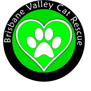 Brisbane Valley Cat Rescue Inc Logo