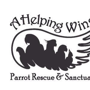 A Helping Wing Logo