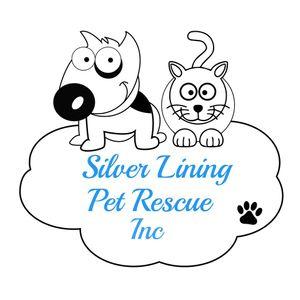 Silver Lining Pet Rescue Inc Logo
