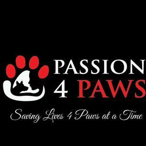 Passion 4 Paws Logo