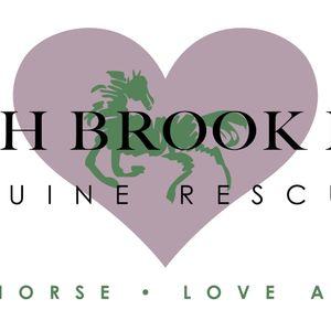 Beech Brook Farm Equine Rescue Logo