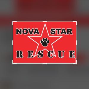 NOVASTAR Rescue Logo