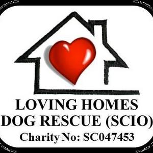 Loving Homes Dog Rescue Logo