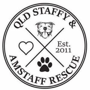 Qld Staffy & Amstaff Rescue Inc Logo