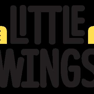 Little Wings Limited Logo