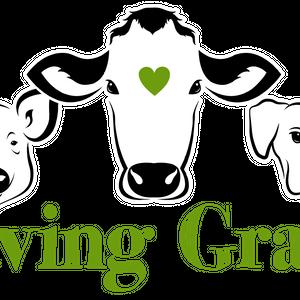 Saving Grace Animal Rescue Logo