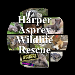 Harper Asprey Wildlife Rescue Logo
