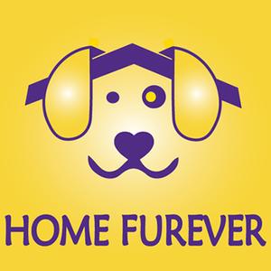 Home Fur-Ever Rescue Logo