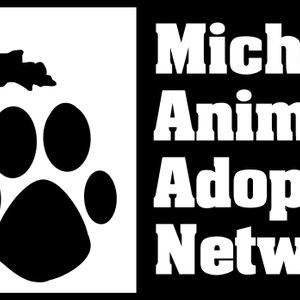 Michigan Animal Adoption Network Logo