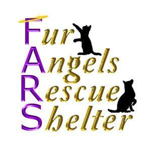 Fur Angels Rescue Shelter Logo