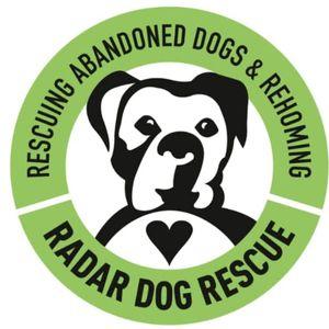 Radar dog rescue Logo