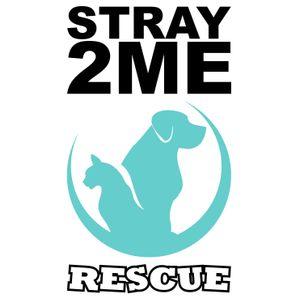 Stray2me Rescue Logo