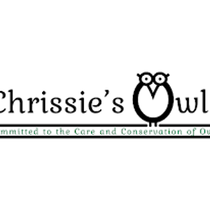 Chrissie's owls & stonesfield owl rescue Logo