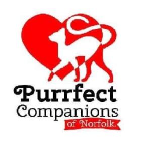 Purrfect Companions of Norfolk Logo