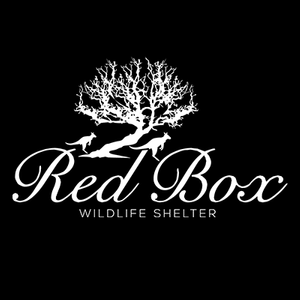 Red Box Wildlife Kangaroo Shelter Logo