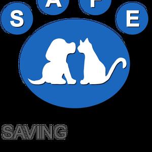 SAFE Metro Logo