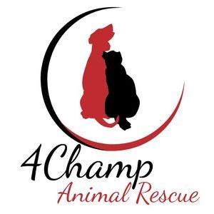 4Champ Animal Rescue Logo