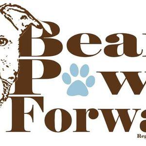 Bear's Paw It Forward Logo