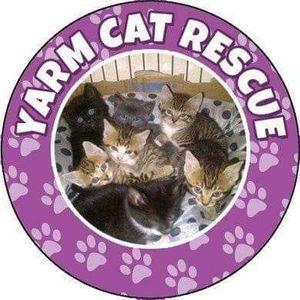 Yarm cat rescue Logo