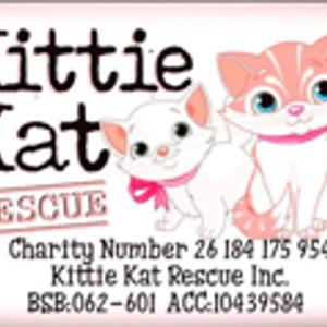 Kittie Kat Rescue Inc Logo