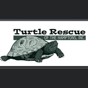 Turtle Rescue of the Hamptons Logo