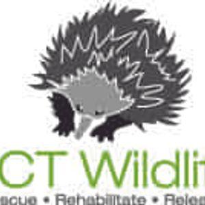 ACT Wildlife Inc Logo