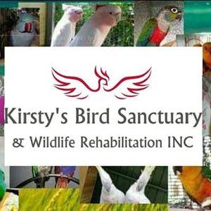 Kirsty's Bird Sanctuary Logo