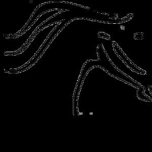 South West Florida Horse Rescue, Inc. Logo