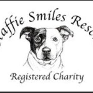 Staffie Smiles Rescue Logo
