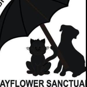 Mayflower Animal Sanctuary Logo