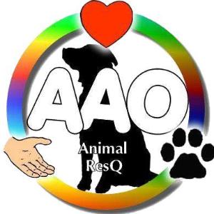 Against All Odds Animal Resq Logo