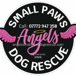 Angel Small Paws Logo